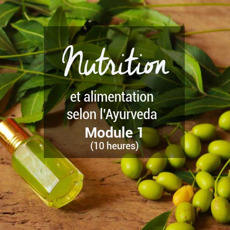 Formation nutrition selon l'ayurveda